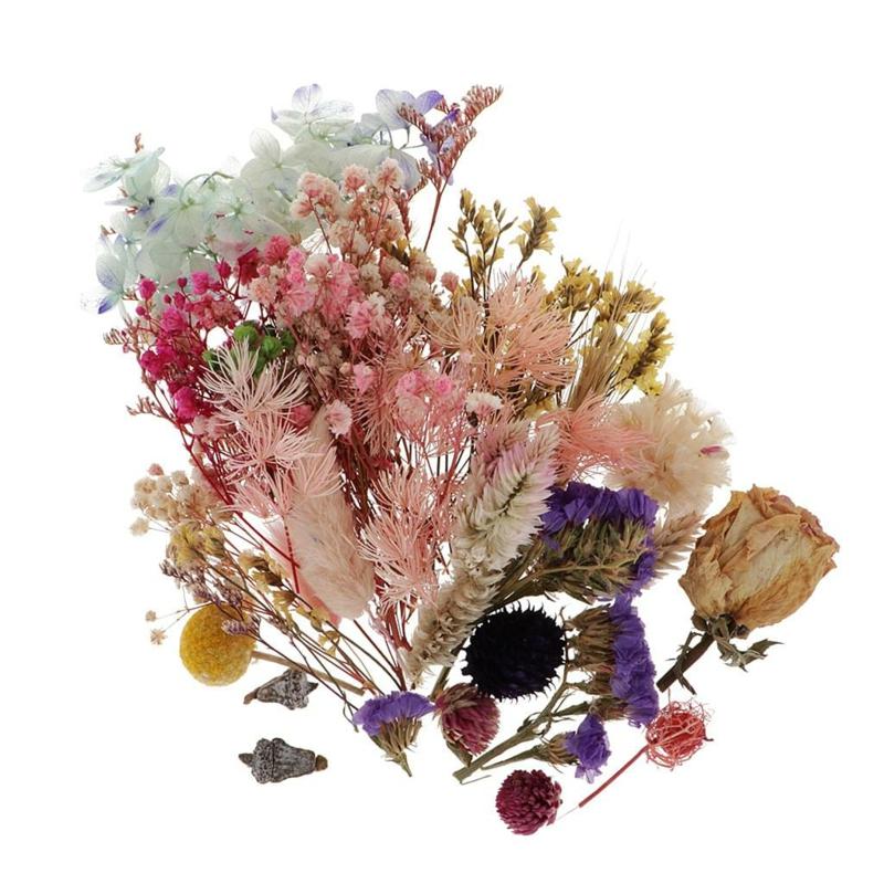 Trockenblumen selber machen Blumenarten auswählen