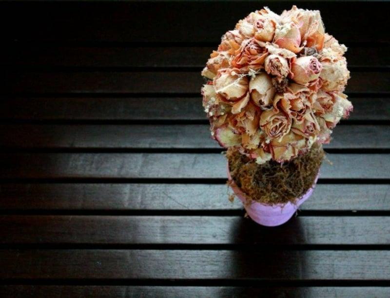 Trockenblumen selber machen Rosen originell