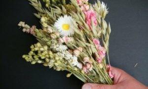 Trockenblumen selber machen Schritt für Schritt erklärt