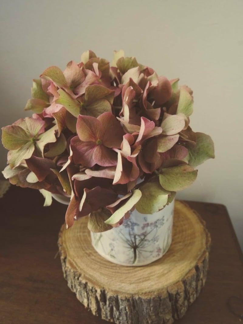 Trockenblumen selber machen Hortensien