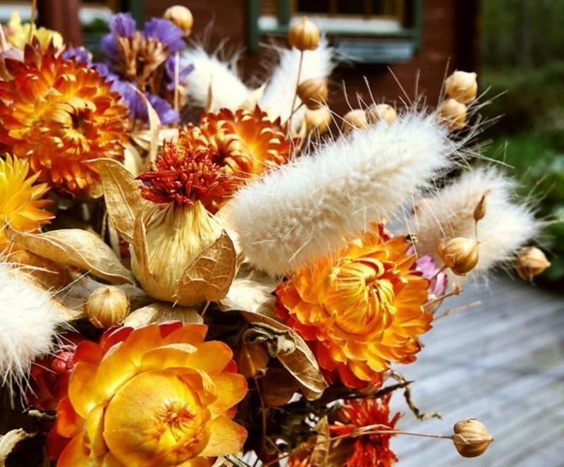 Trockenblumen selber machen Anleitung