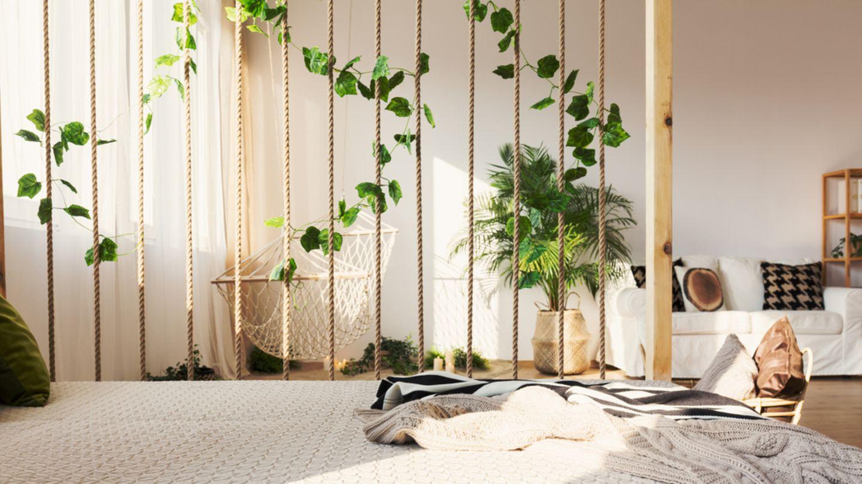 Raumteiler Ideen Trennwand aus Seil Pflanze