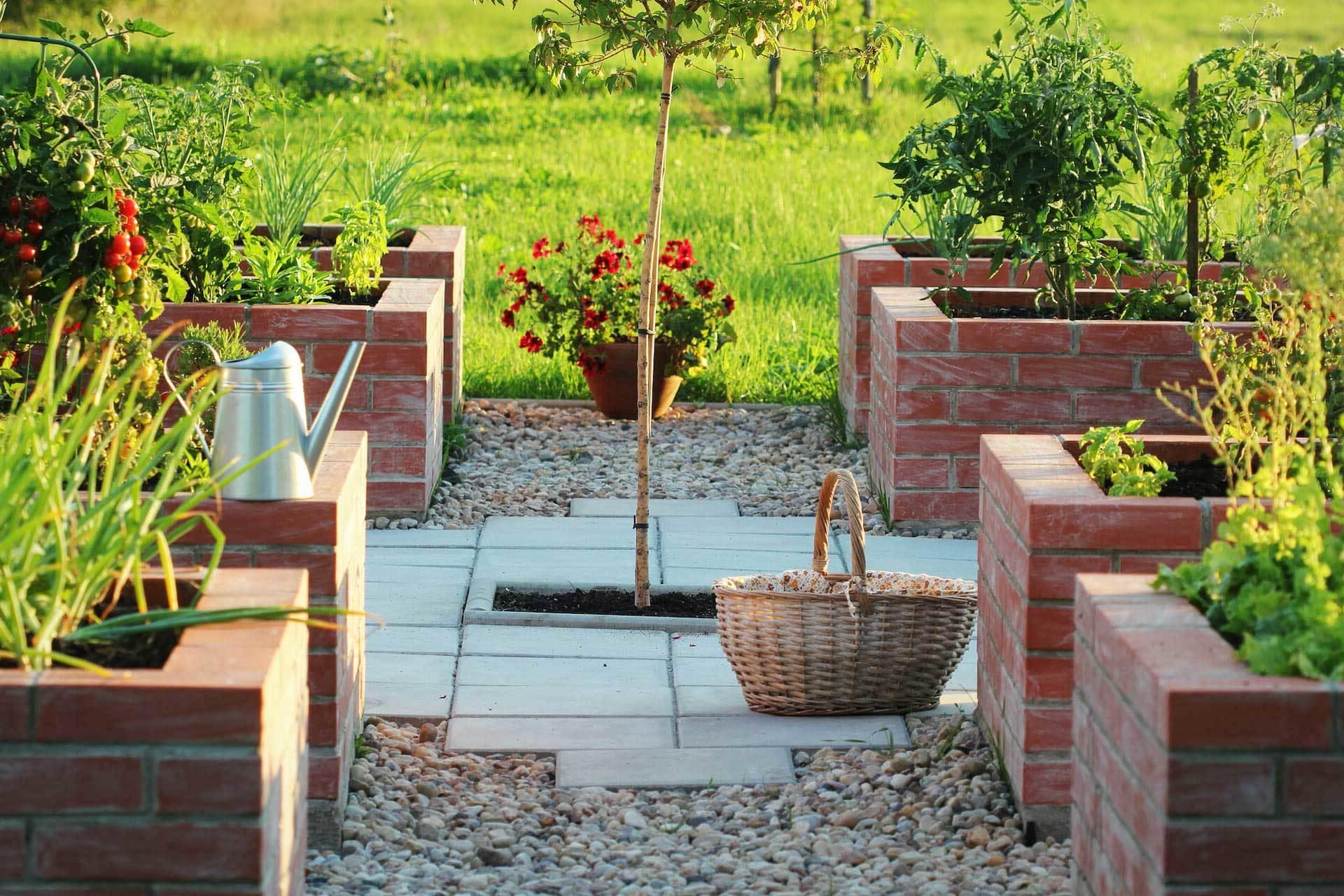 Hochbeet als beste Alternative zum Garten - alle Vorteile im Überblick